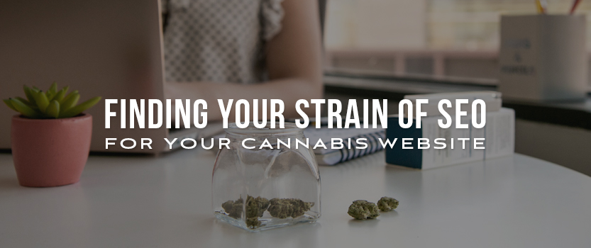 Finding Your Strain of SEO for Your Cannabis Website