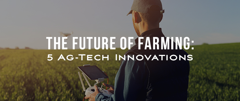 The Future of Farming: 5 Ag-Tech Innovations
