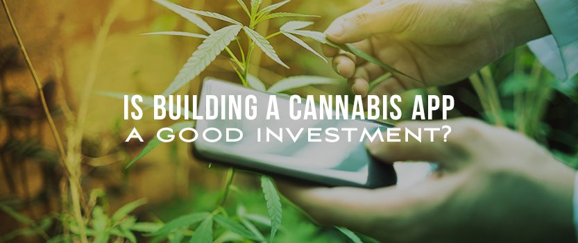Is Building a Cannabis App a Good Investment?